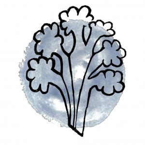 Kaliflower Organics